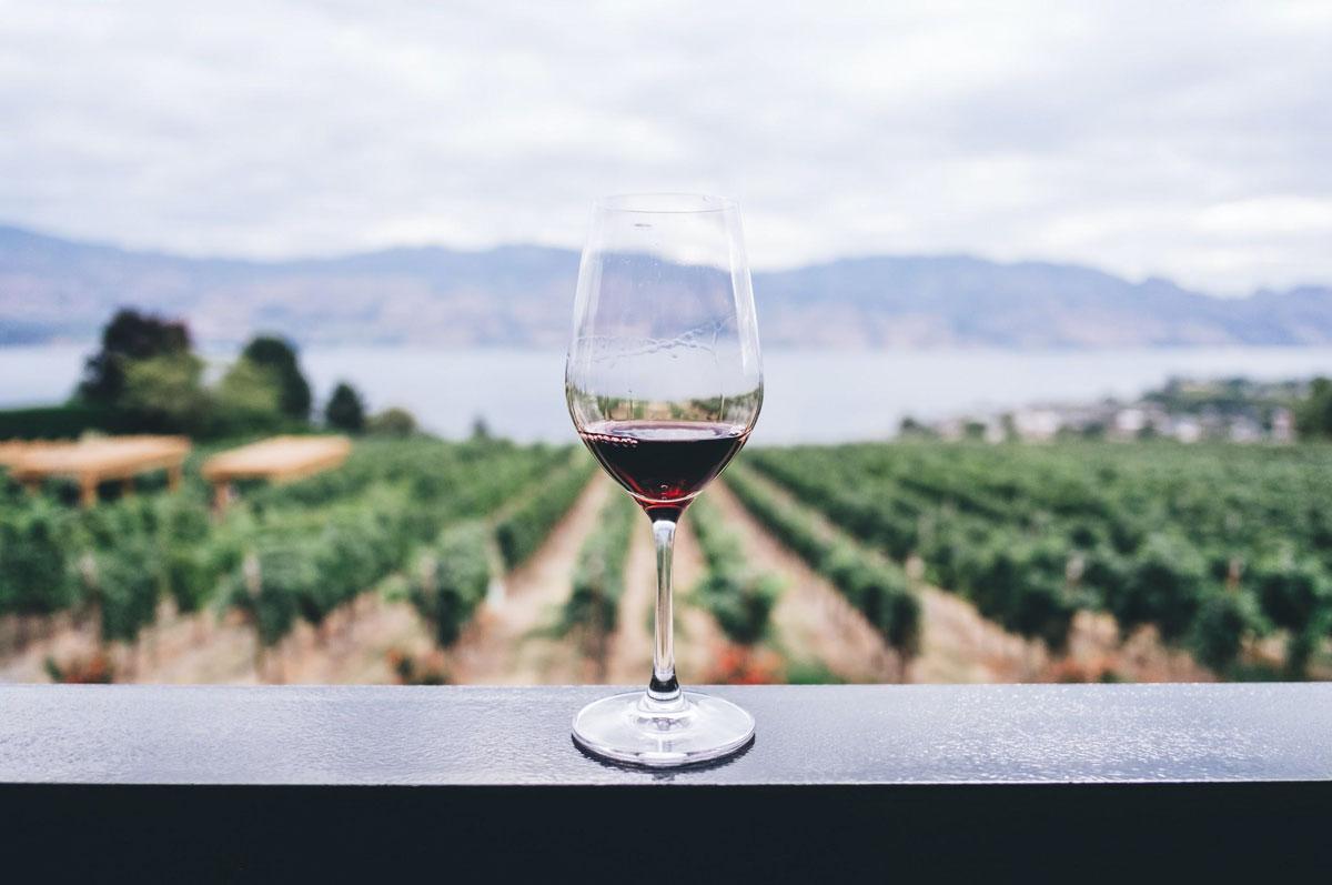 wine tasting vacation
